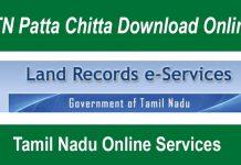 Patta Chitta Download Online